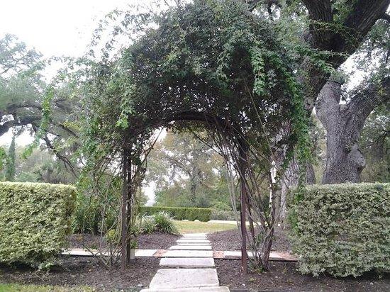 The Contemporary Austin - Laguna Gloria : Garden