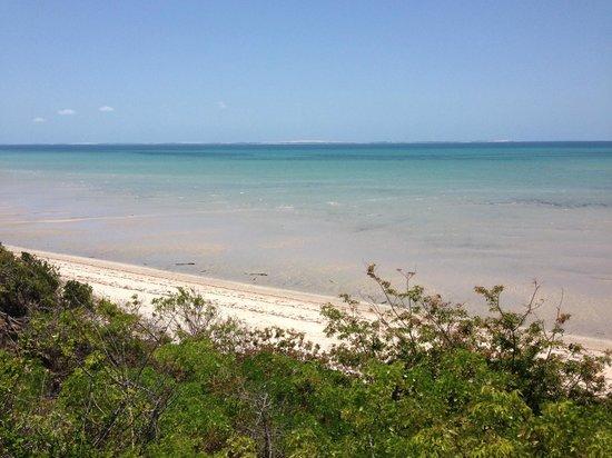Marimba Secret Gardens : Strand