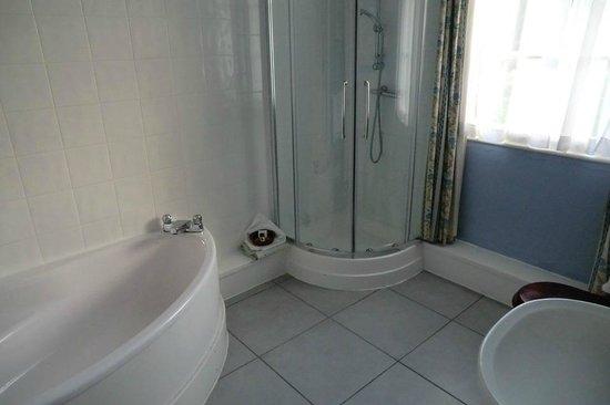 Corse Lawn House Hotel : Bathroom had 2 showers