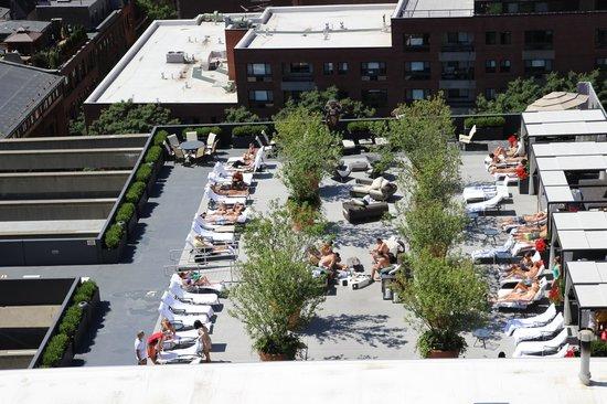 Revere Hotel Boston Common: roof top bar