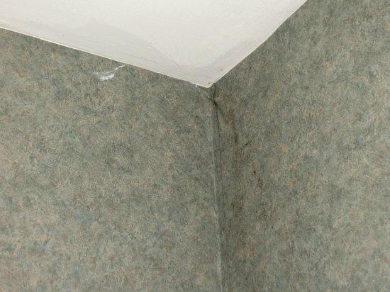 Days Inn Conference Center Branford / New Haven: Black Mold in bathroom