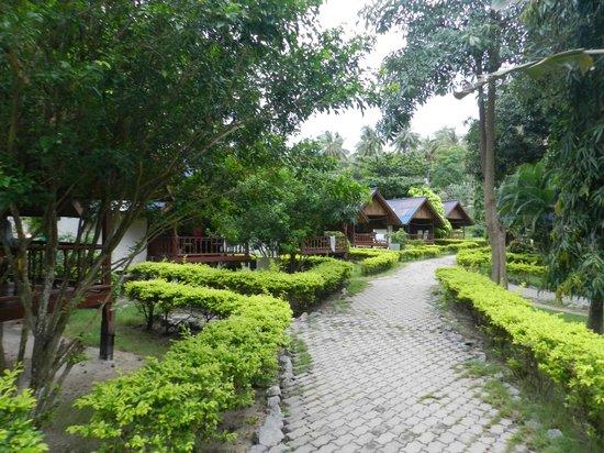 Seashell Resort Koh Tao: un des chemins menant aux différentes chambres/bungalows