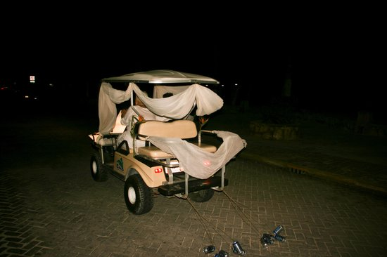 Hotel Posada Del Mar: They decorated our golf cart!
