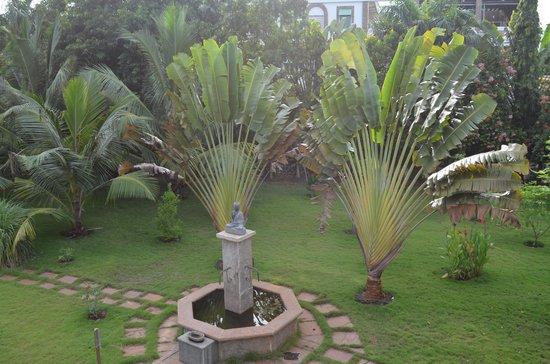 Maison Gascon : fontaine avec palmiers du voyageur