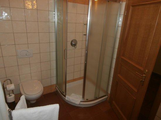 Hotel Caesar Prague : Bathroom 1