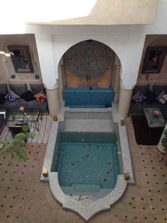 Riad Papillon: Plunge pool