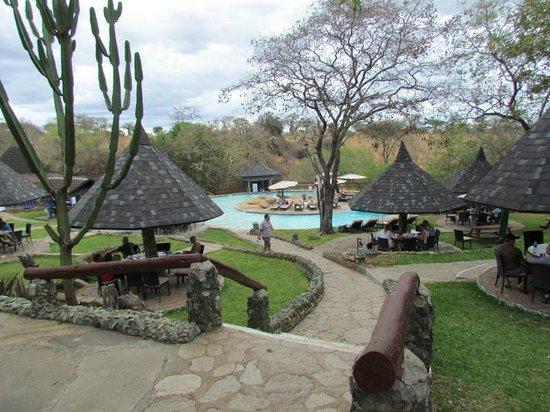 Tarangire Sopa Lodge: Piscine