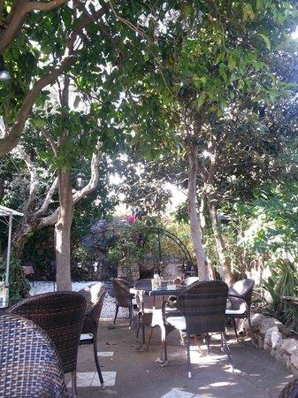 Aroma Cafe & Secret Garden: Secret Garden