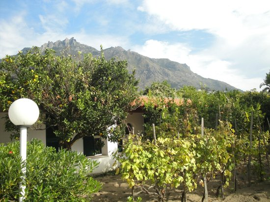 Residence San Domenico : au milieu des orangers et des citronniers