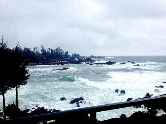 Fetch Restaurant: Stunning views from Black Rock Oceanfront Resort.....