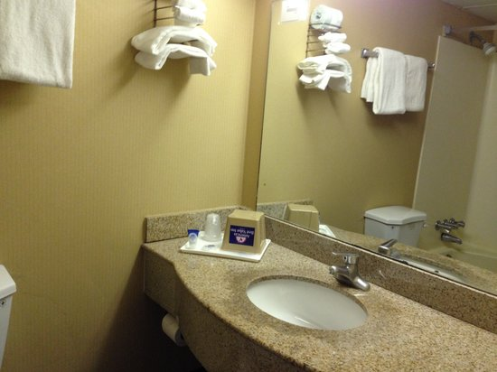 Americas Best Value Inn - Tulsa West (I-44) : Guest Bathroom