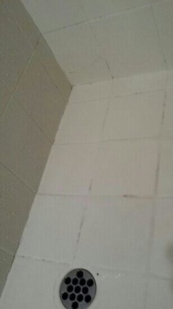 Rydges Southbank Townsville : mould / dirt / time for a refit