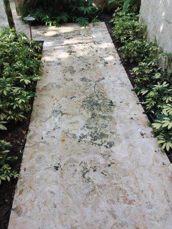 The St. Regis Bahia Beach Resort: Mossy slipery pathway