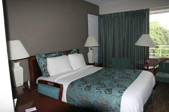 Americana Hotel: Room