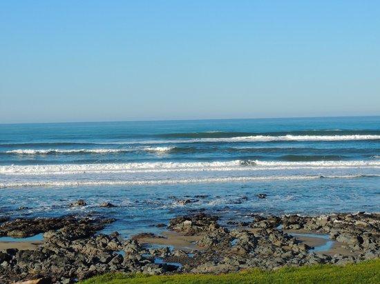 Sea Perch RV Resort : Oceanfront RV site view