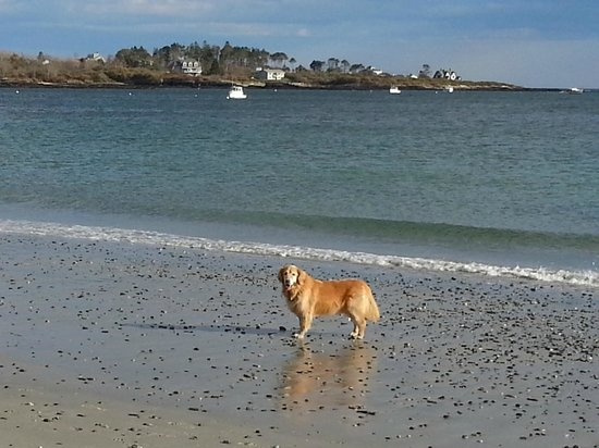 Inn by the Sea: Riley at Cape Elizabeth, ME