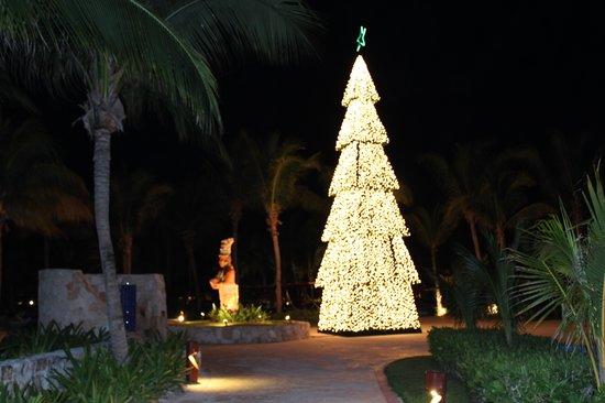 Barcelo Maya Palace: Christmas Tree