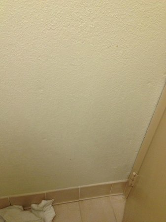 Econo Lodge North Austin: More of bathroom