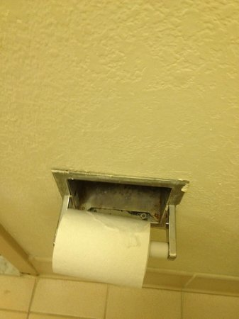 Econo Lodge North Austin: Looks like some type of mold behind the toilet paper