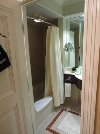 Lenox Hotel: Small Bathroom, outdated but clean.