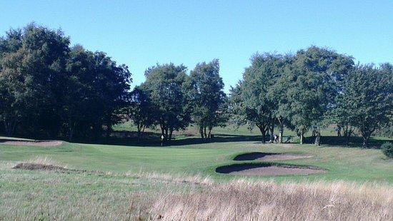 South Moor Golf Club: 14th hole