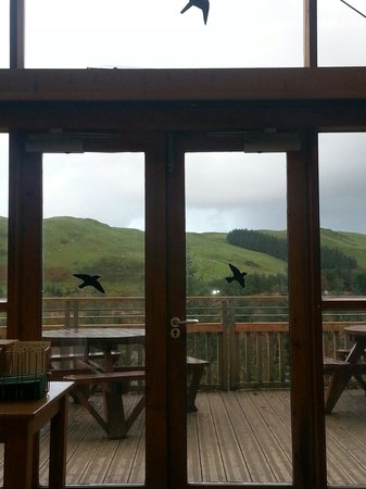 Bwlch Nant yr Arian Forest Visitor Centre: From the cafe