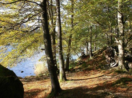 Castlerigg Hall Caravan and Camping Park: Grasmere