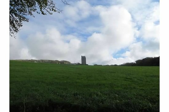Ballinalacken Castle Country House: View from main road