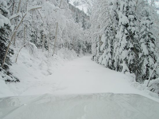 Mild to Wild Rafting and Jeep Trail Tours : Fresh Snow