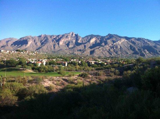 Hacienda Del Sol Guest Ranch Resort: View from hotel.