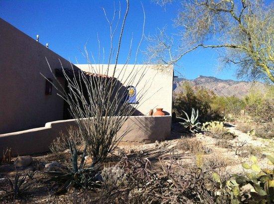 Hacienda Del Sol Guest Ranch Resort: Suite 40
