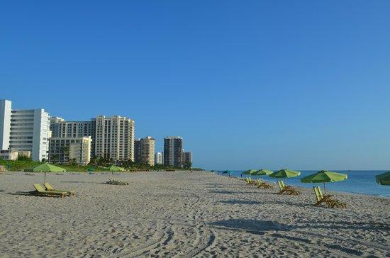 Marriott's Oceana Palms: beach