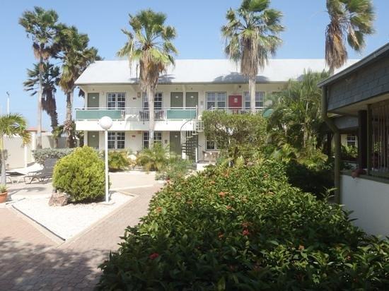 MVC Eagle Beach: hotel