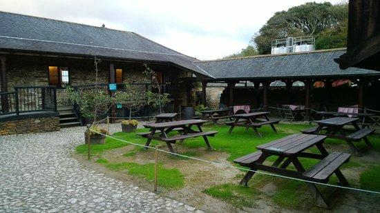 Healey's Cornish Cyder Farm: The farm