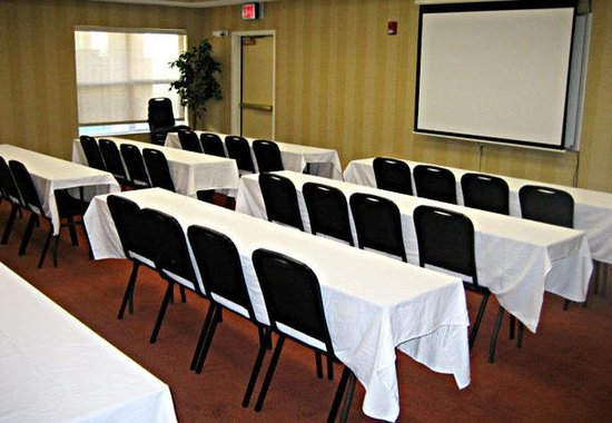 TownePlace Suites Rochester: Meeting Room