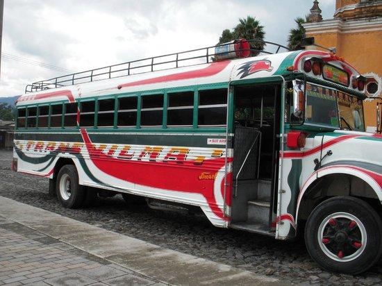 Antigua Tours, Travel & Hotels by Elizabeth Bell - Day Tours: public transportation
