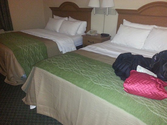Comfort Inn & Suites St. Louis - Chesterfield : Ssggy Room