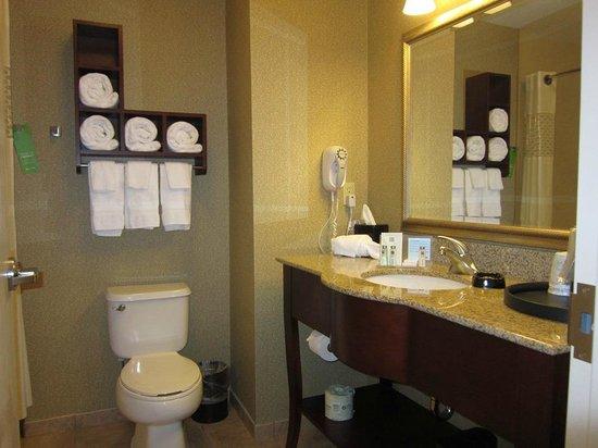 Hampton Inn Jackson: bath