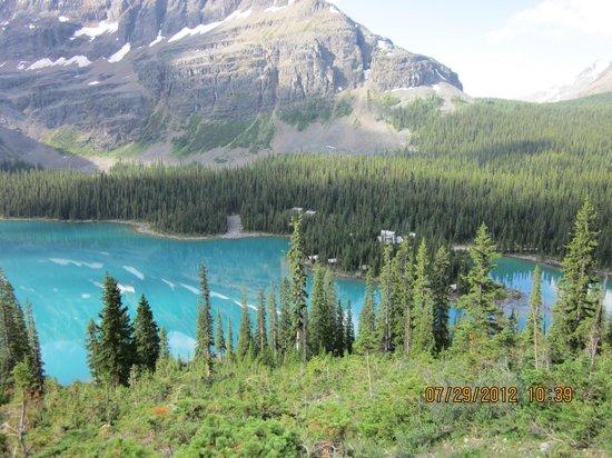 Lake O' Hara: View of Lake from Alpine Circuit Trail