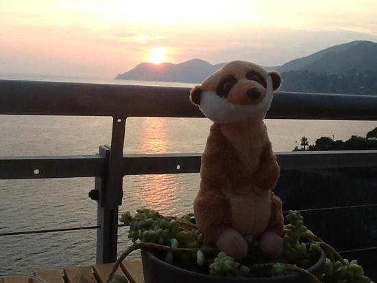 Arpaiu: guisseppe on the deck at sunset