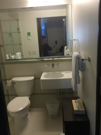 SpringHill Suites New York Midtown Manhattan/Fifth Avenue: Room 1501 Bathroom pic 2
