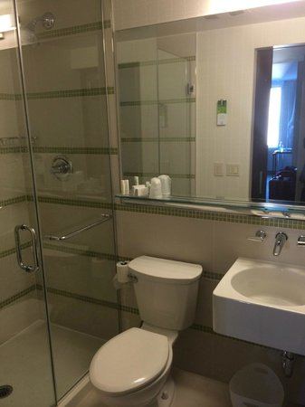 SpringHill Suites New York Midtown Manhattan/Fifth Avenue: Bathroom shower in Room 1501