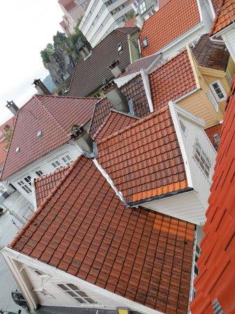 Skuteviken Guesthouse: rooftops