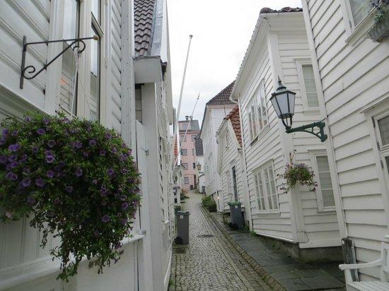 Skuteviken Guesthouse: guesthouse