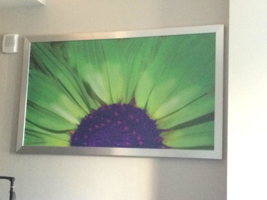 SpringHill Suites New York Midtown Manhattan/Fifth Avenue: Artwork theme throughout hotel