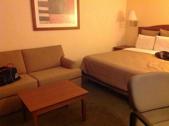 Fiesta Inn Mexicali: habitacion sofa cama