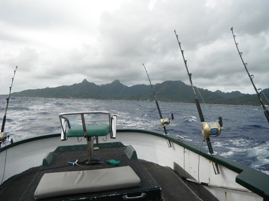 Seafari Fishing Charters: Ready for a hit