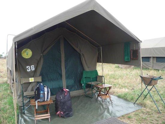 Serengeti Tented Camp - Ikoma Bush Camp : Tent