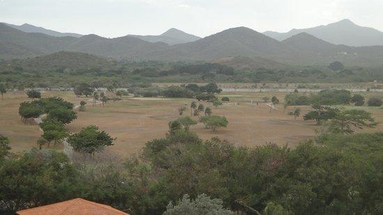 Hesperia Isla Margarita: Campo de golf seco, sin cuidar.