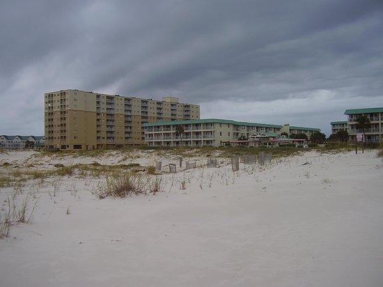 Gulf Shores Plantation : PLANTATION DUNES AND EAST BUILDINGS